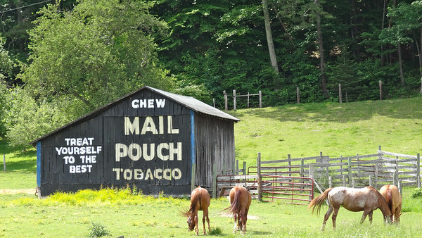 Mail Pouch Tobacco Barn Route 219