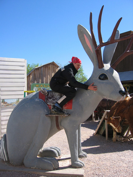 Wall Drug Jackalope