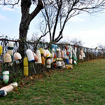 Buoys on the fence at the Old Field Lighthouse