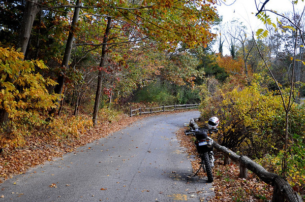 DRZ in the autumn leaves on Long Island