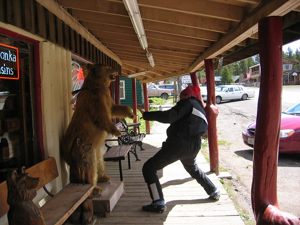 Crudmop wrestles a bear in Cooke City Montanas Trading Post