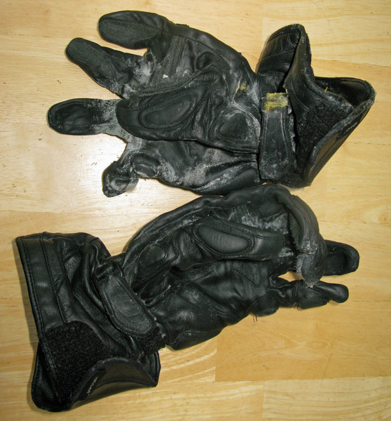 Crudmops nasty mold covered leathere motorcycle gloves