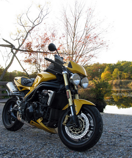 Speed Triple in the Autumn