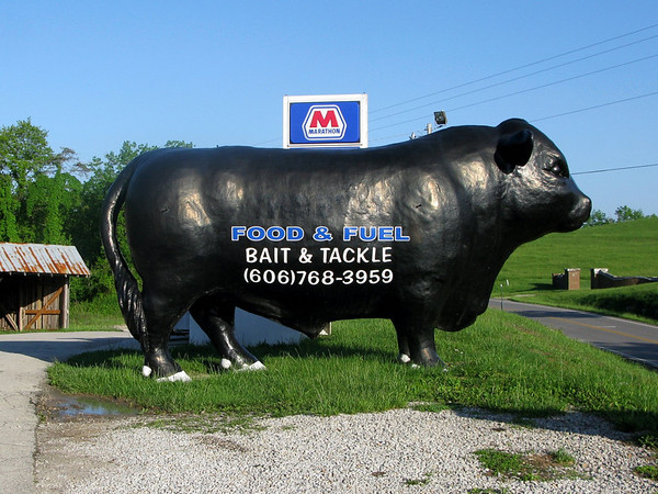 Giant Kentucky Bull Statue