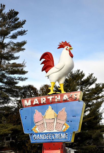 Marthas Dandee Creme Chicken Lake George