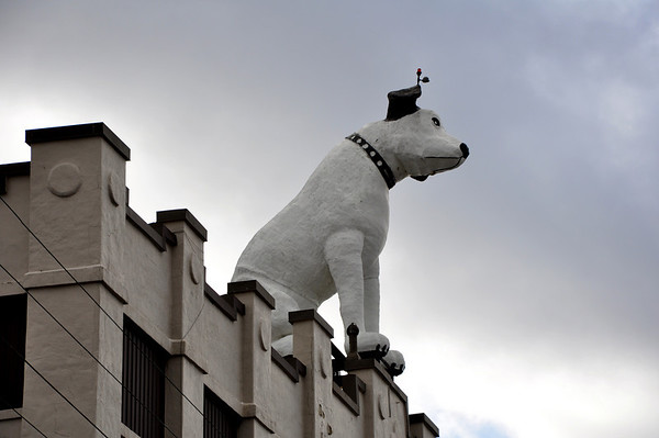 Nipper the RCA Dog Albany