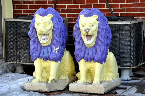 Punk Rock Cement Lions Ocean City Maryland
