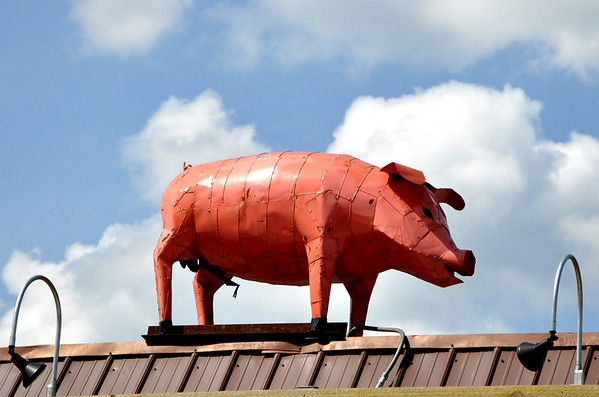 Rooftop Metal Pig Leeds Alabama