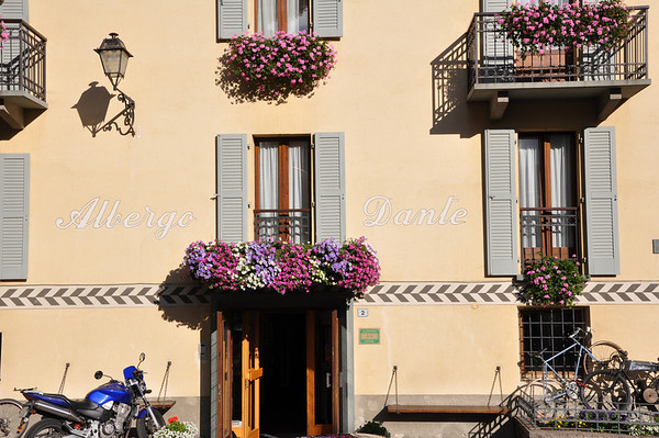 Flowers in Bormio