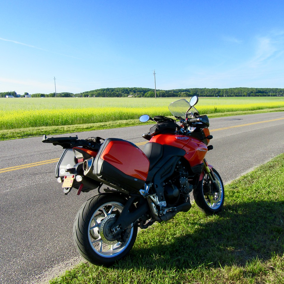 triumph tiger on long island motorcycle roads - north shore farm country - rapeseed field