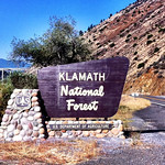Klamath National Forest Sign Route 96