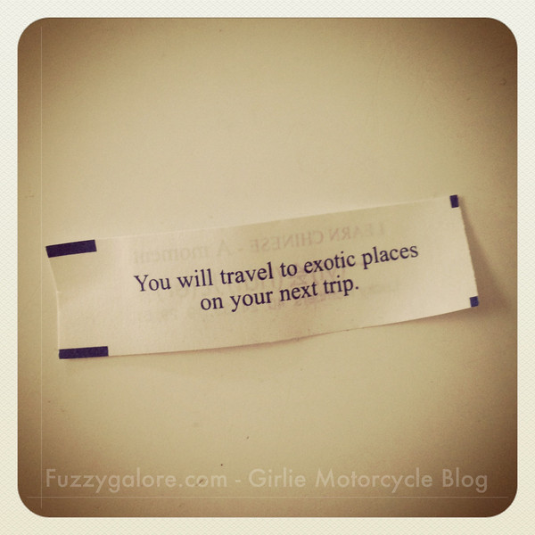 you will travel to exotic places on your next trip