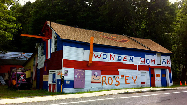 Wonder Woman Rosey Barn Lee Mass