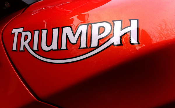 Orange Triumph Tiger Triumph Logo