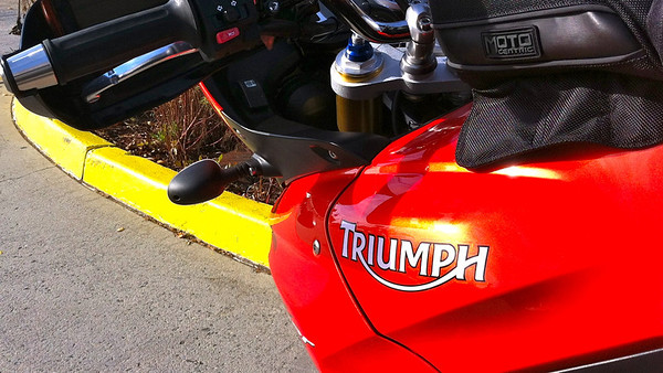 Triumph logo on the Tiger