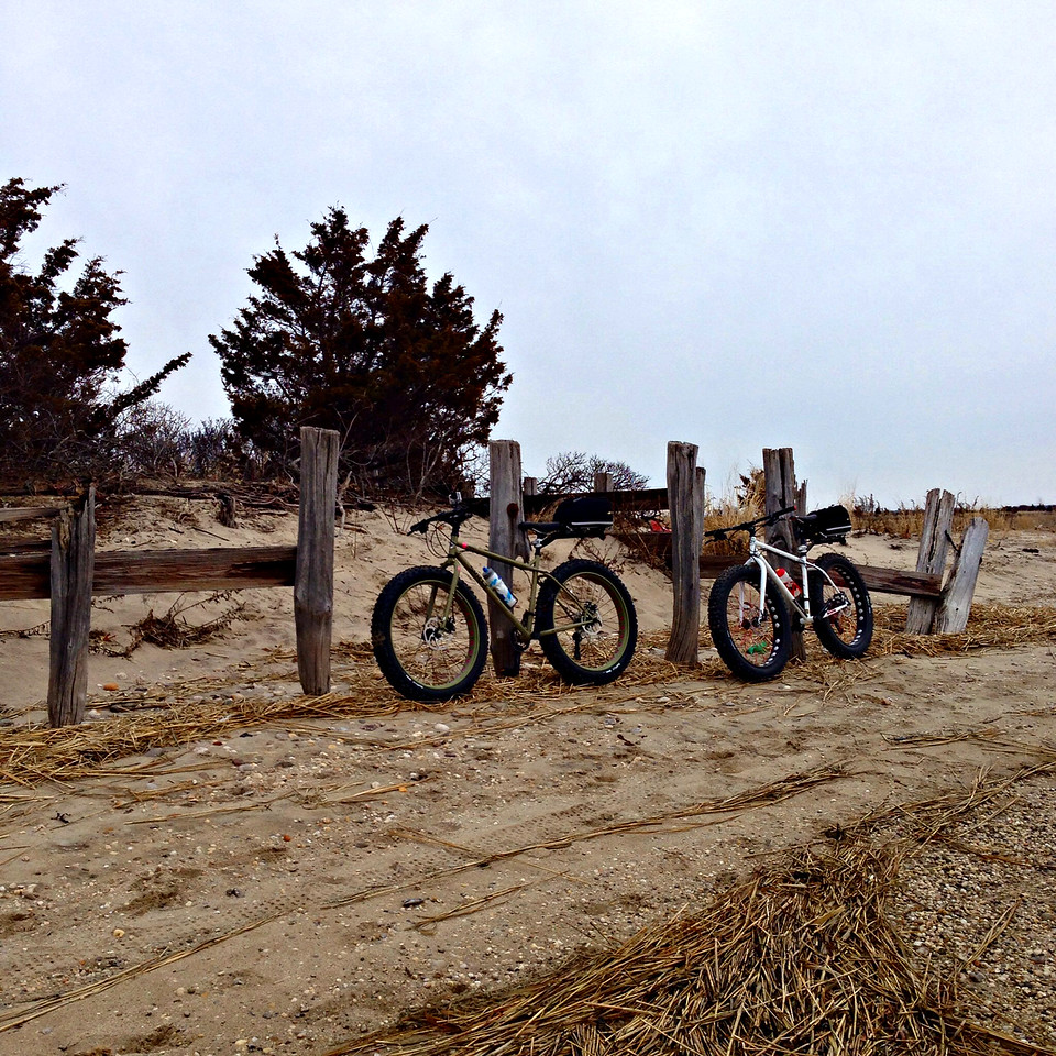 fatbikes at caumsett