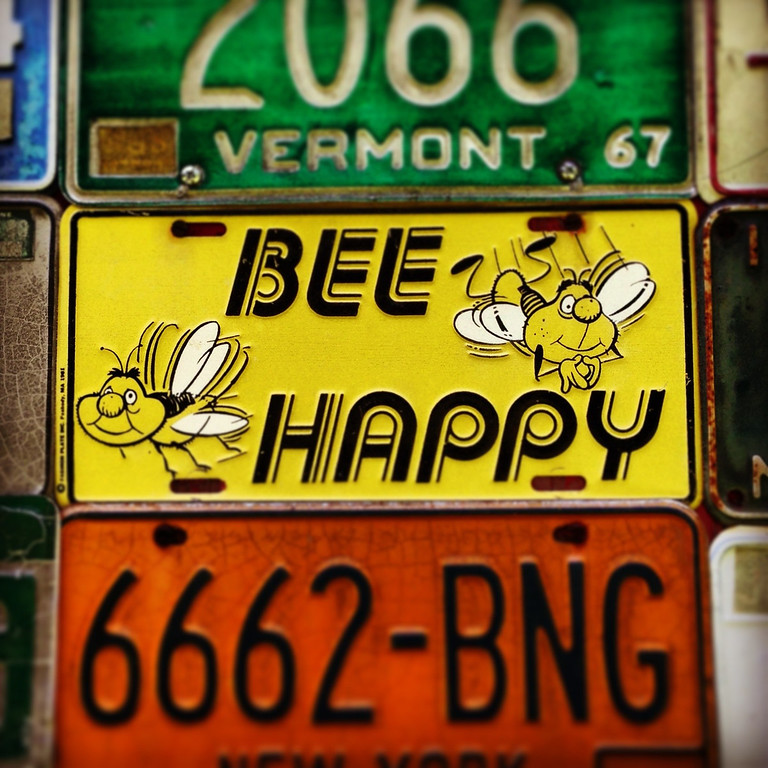 bee happy license plate new hampshire