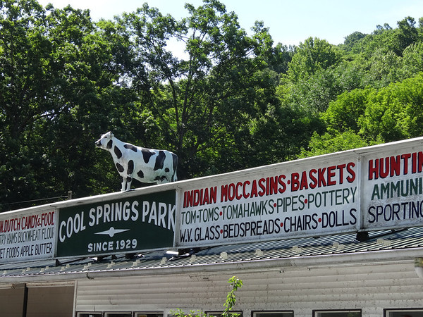 Cool Springs Park Roof Cow