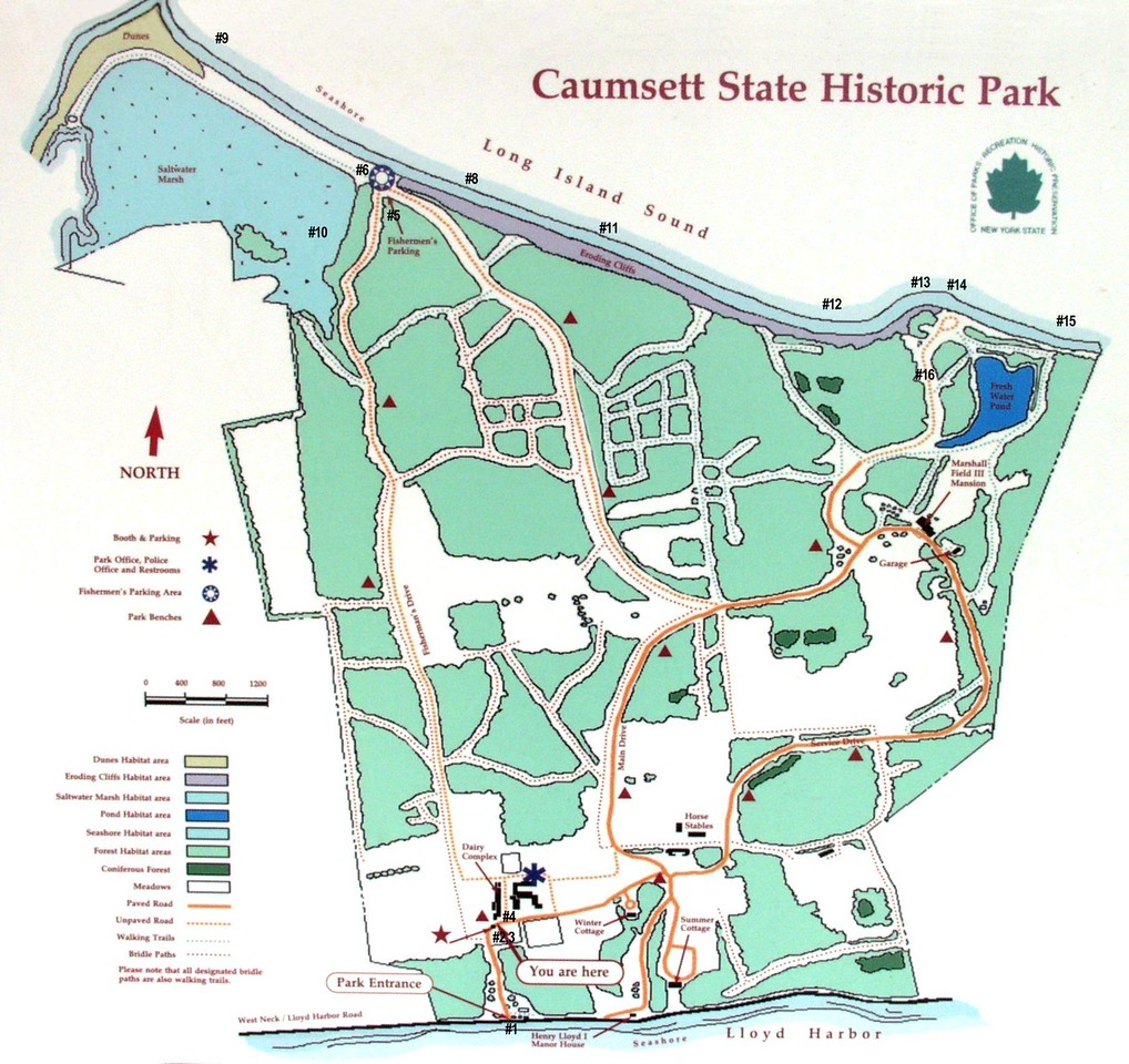 caumsett map