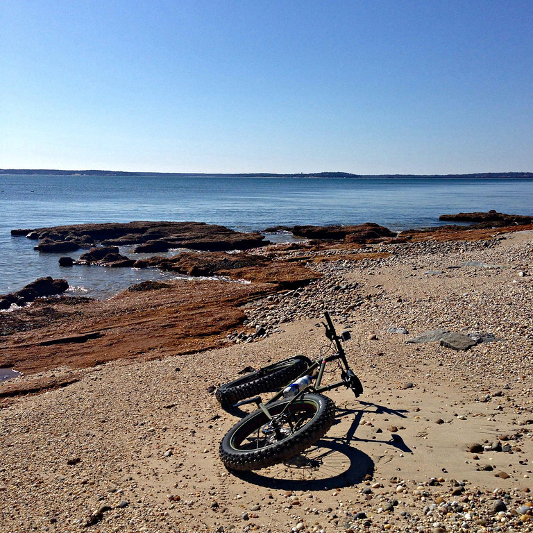 fatbike out to bug light orient