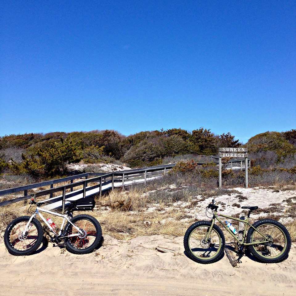 fatbikes near sunken forest sign