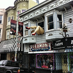 Legs over Haight Street
