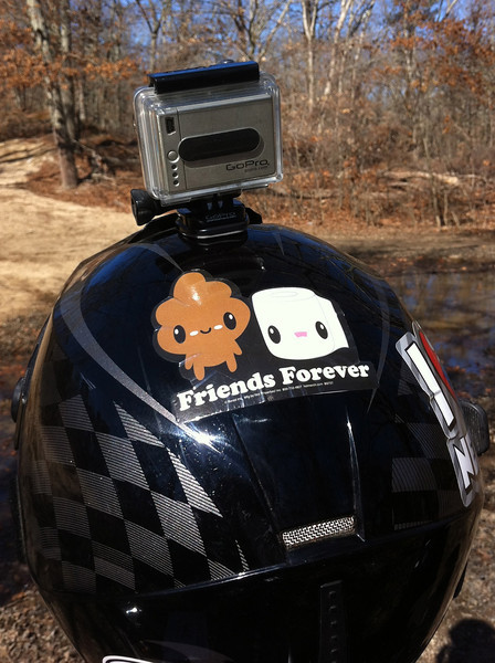 Friends Forever Sticker