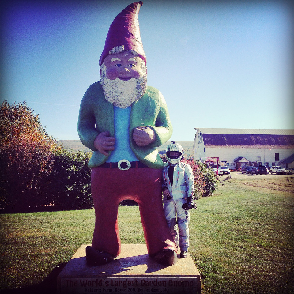 fuzzygalore chomsky largest garden gnome