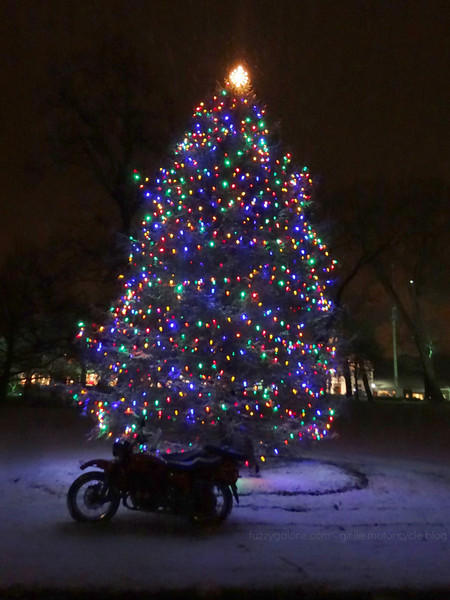 ural in the snow by christmas tree