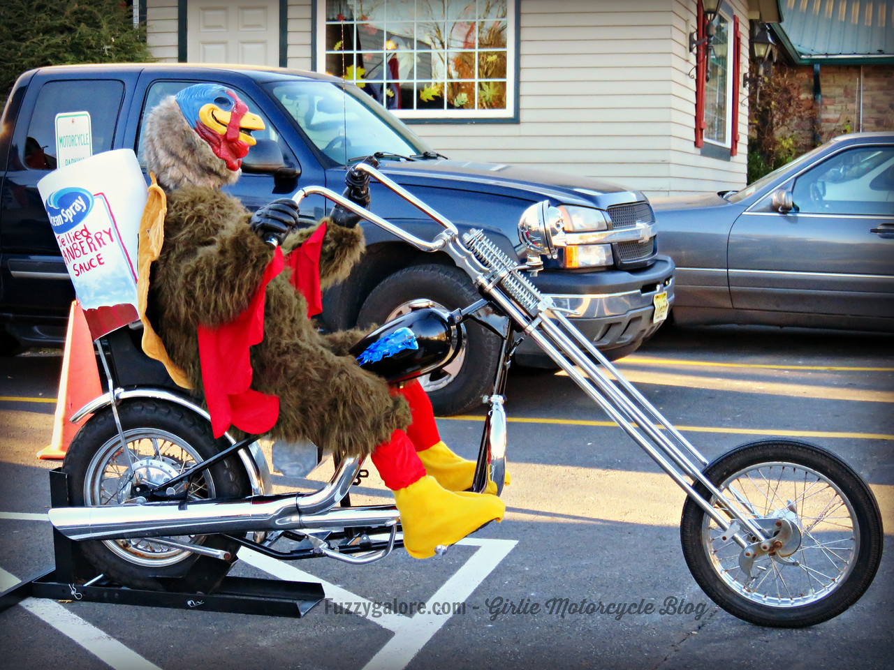 fuzzygalore turkey riding a chopper motorcycle