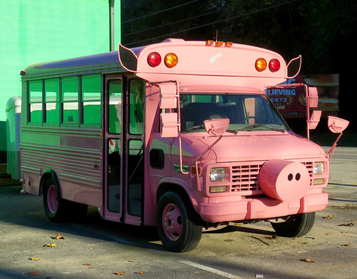 pink pig bus!