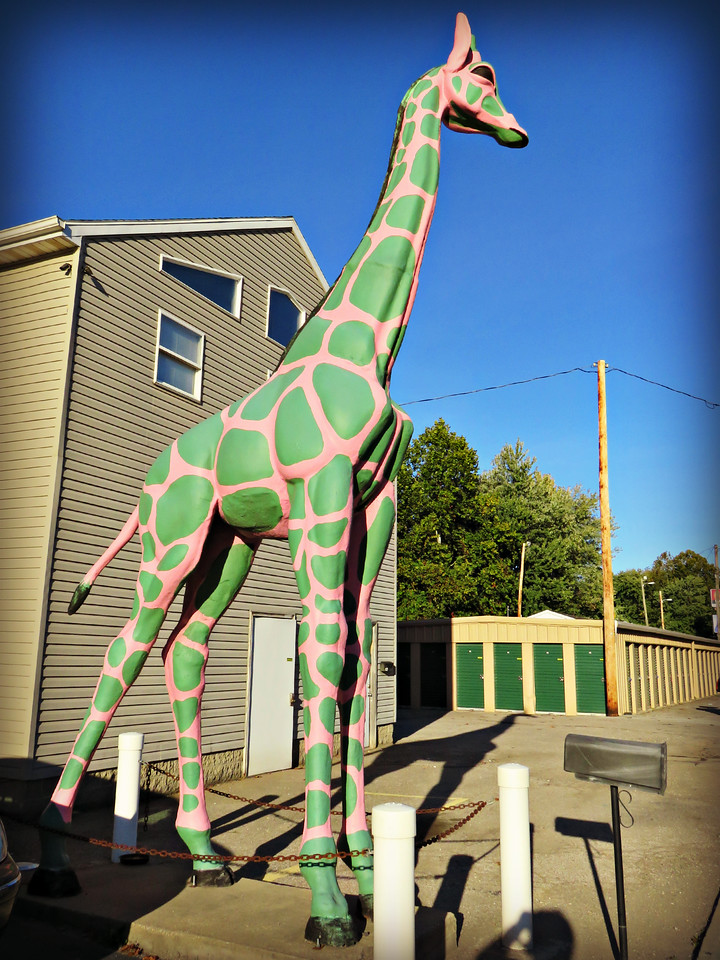 pink giraffe with green spot