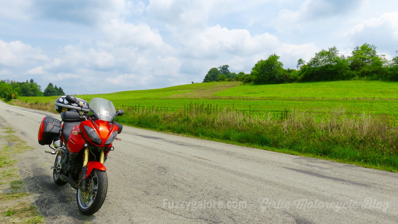 fuzzygalore triumph tiger in pennsylvania farmland